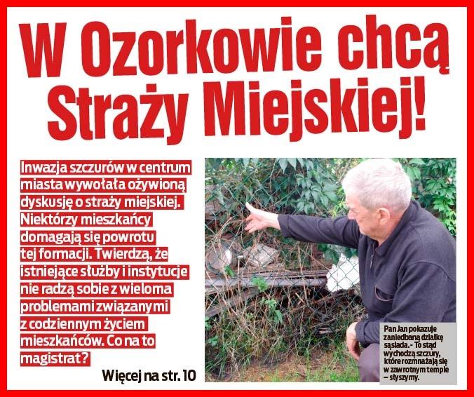 W Ozorkowie chcą Straży Miejskiej!