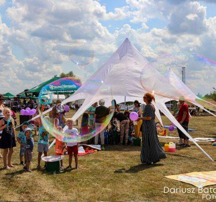 festiwal lawendy
