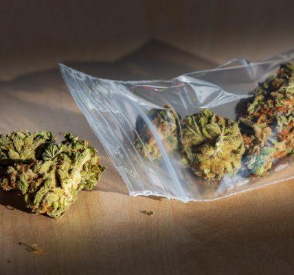 syntetyczna marihuana
