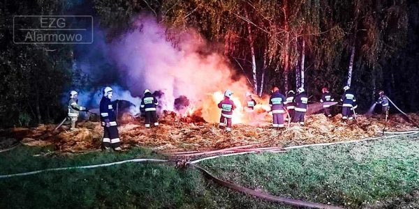 pożar blisko lasu