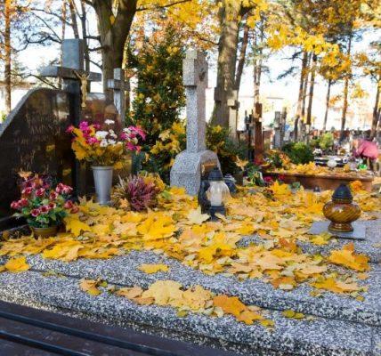 liście na grobach