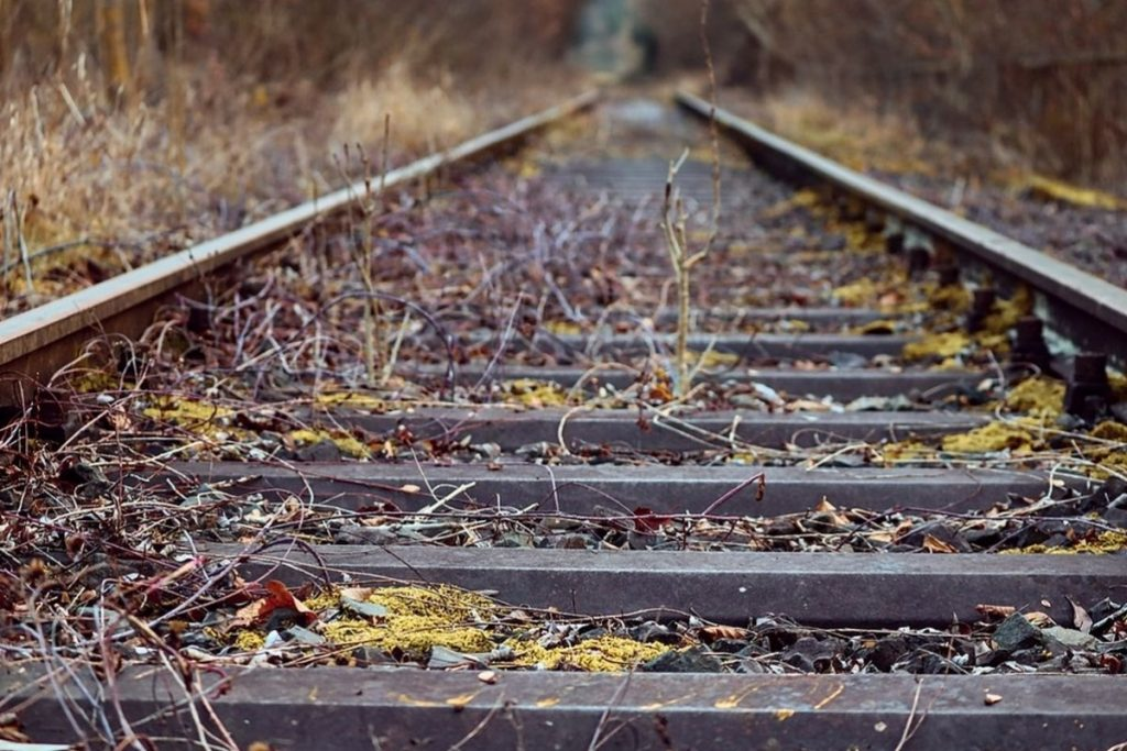 tory pociąg
