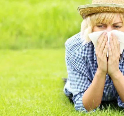 przybywa alergików