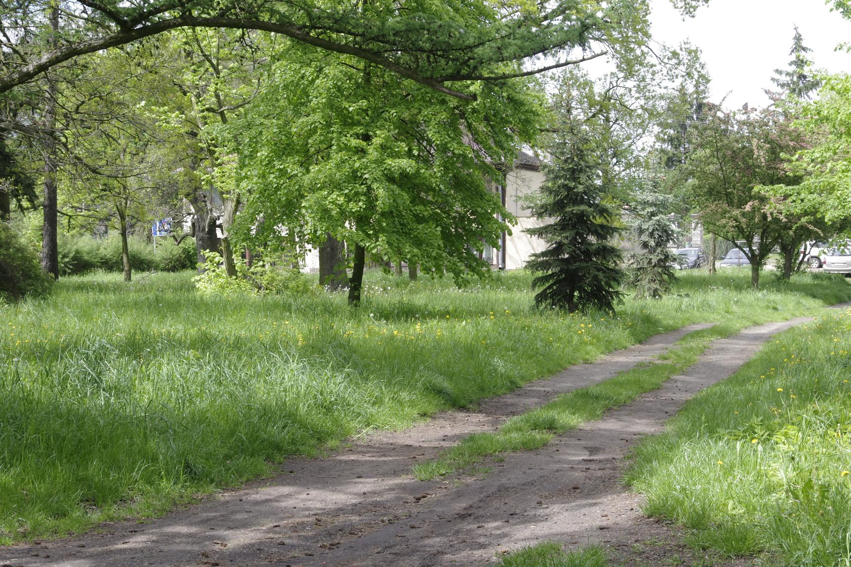 zapomniany park