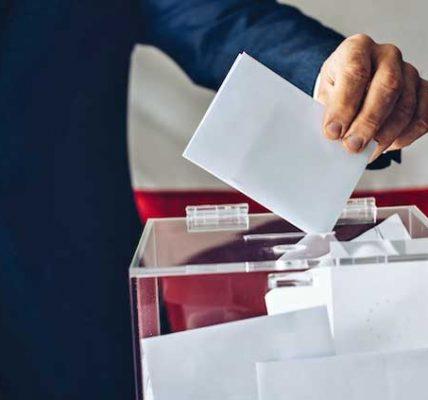 wybory grabów