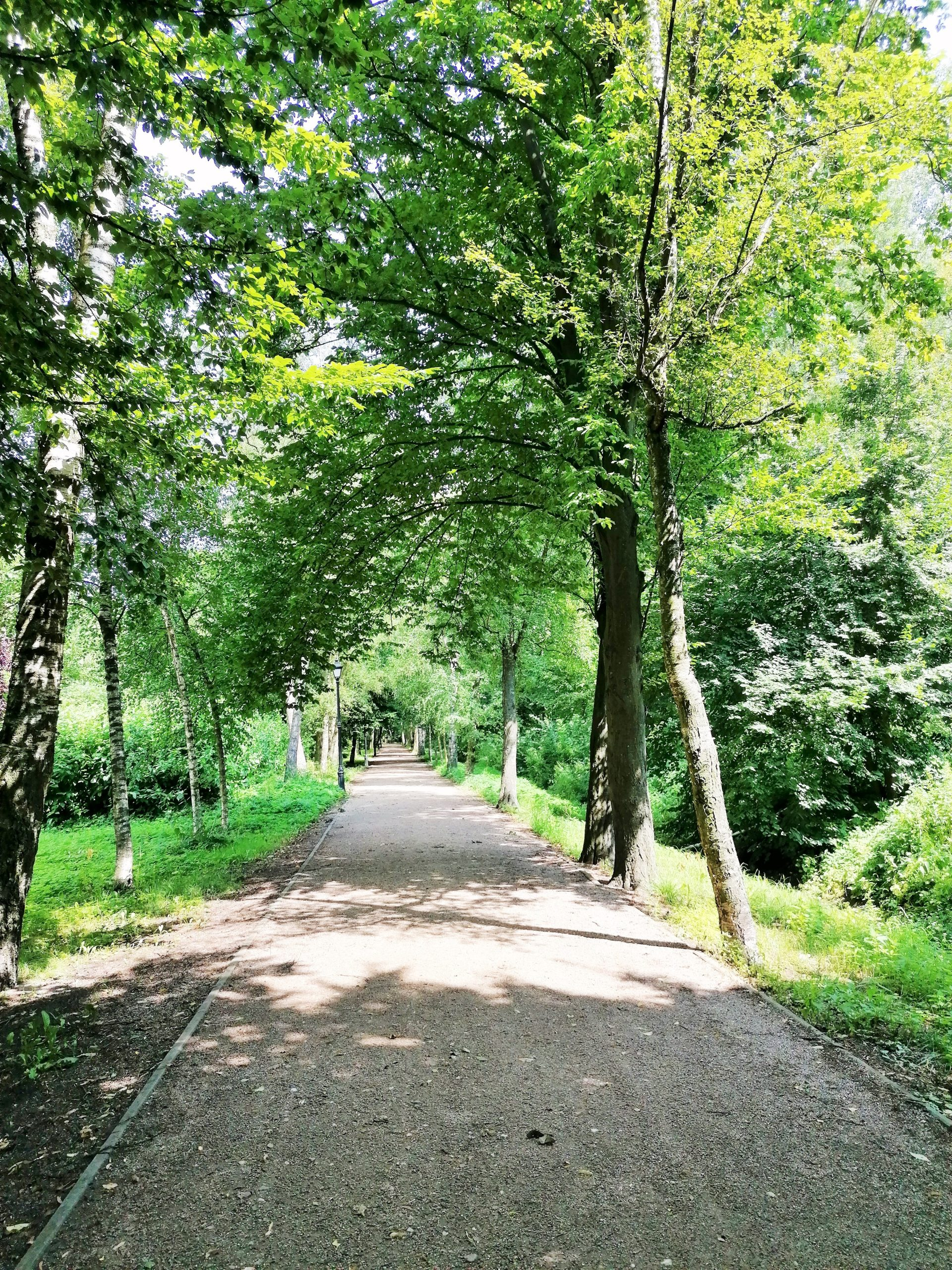 łęczyca park