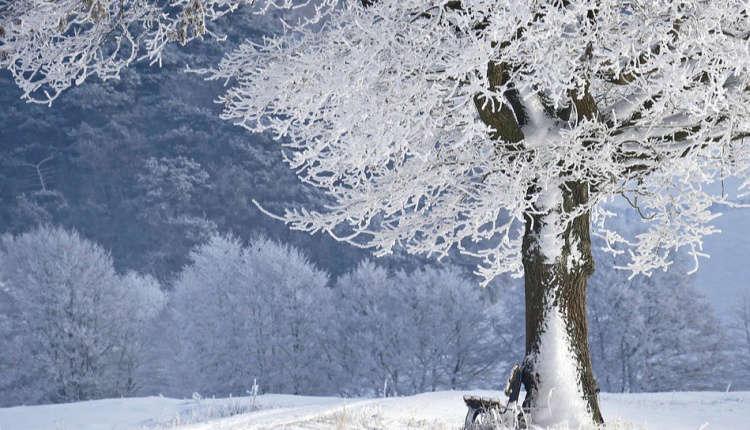 zima pogoda
